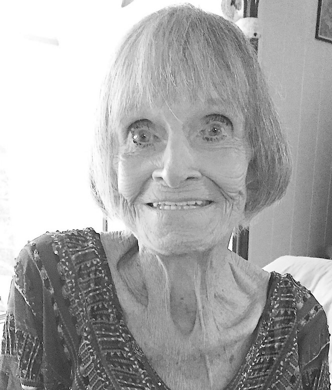 Sharon Lee Price