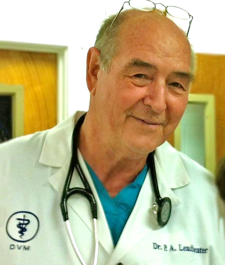 DR. PATRICK A. LEADBEATER