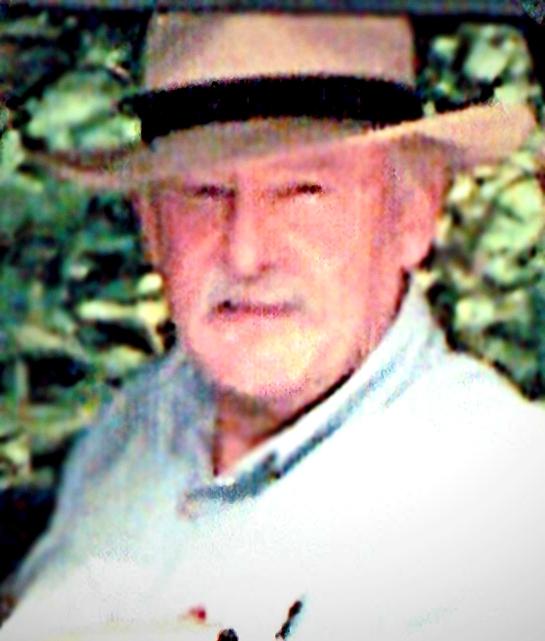 DAVID WILSON CORNWELL